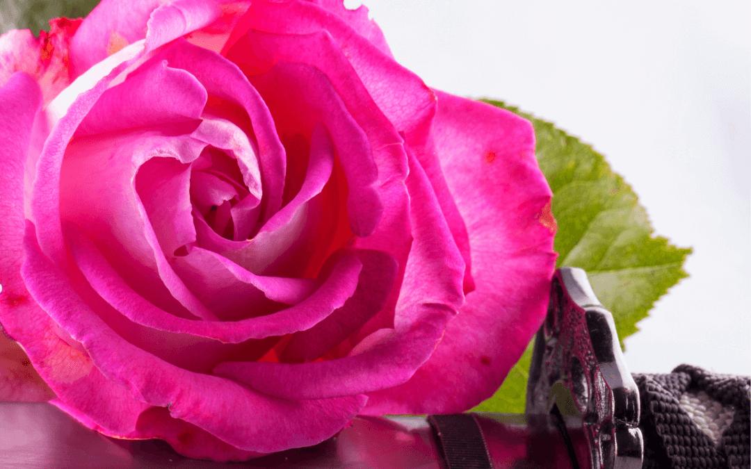 7 Tipps, wie eine Trennung auf jeden Fall in einem Rosenkrieg endet